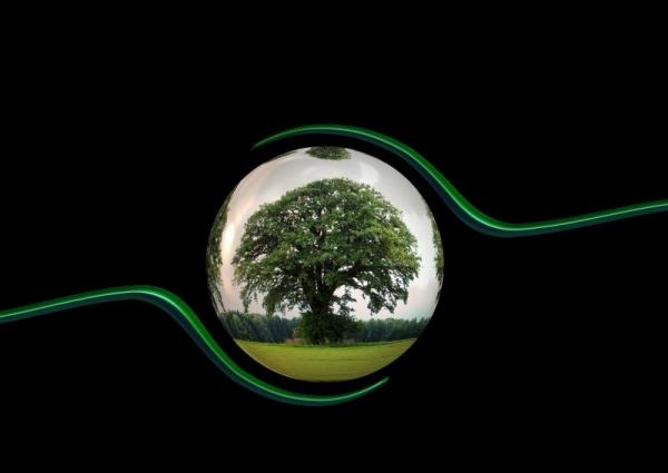 Il modello di dichiarazione ambientale MUD 2020
