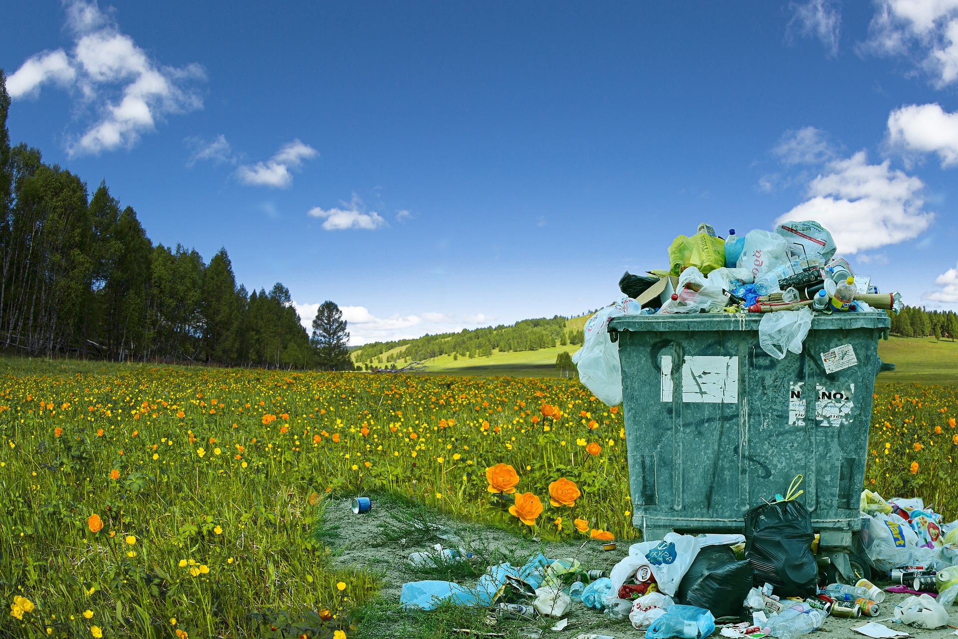 Decreto rifiuti: che cosa cambia